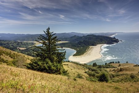 Cascade Head meadow on Oregons coast. photo