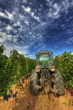 Tractor on a vineyard in Oregons Willamette Valley