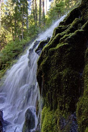 proxy falls: Upper Proxy Falls in central Oregon. Stock Photo