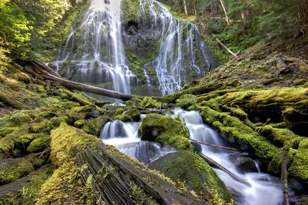 proxy falls: Front view of Lower Proxy Falls in Oregon