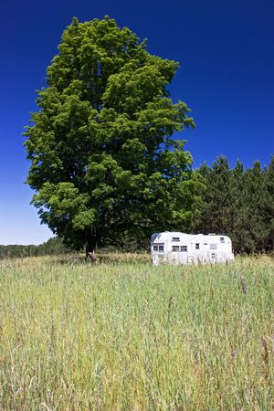 Trailer sitting next to a big maple tree in a field