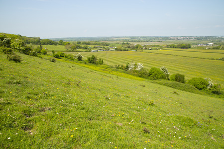 isle: Rolling landscape on top of the Isle of Wight Stock Photo