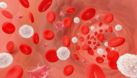 Red and white blood cells and platelets flowing through a vessel or a vein. Medical and microbiology 3d rendering illustration. Zdjęcie Seryjne - 124757419