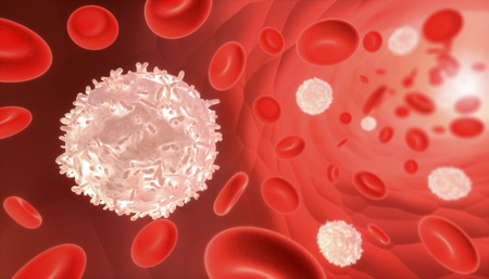 White and red blood cells flowing through a blood vessel. Medical and biology 3D render illustration.
