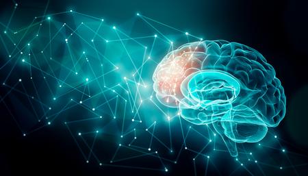 Aktywność ludzkiego mózgu z liniami splotu. Zewnętrzne połączenia mózgowe w płacie czołowym. Komunikacja, psychologia, sztuczna inteligencja lub AI, informacje neuronowe lub koncepcje poznawcze ilustracja z przestrzenią kopii. Zdjęcie Seryjne