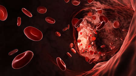 Artery or vein bloodstream with red blood cells or erythrocytes 3D rendering illustration.