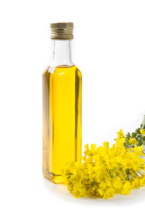 Canola oil  rapeseed flowers isolated on a white background 写真素材