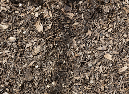 wood chip: Wood chip mixed into soil.