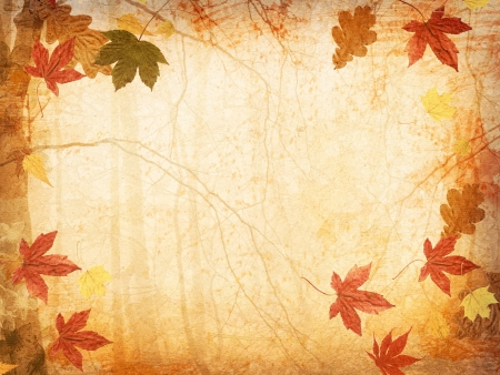 Fall Leaves Background Stock Photo - 16847805