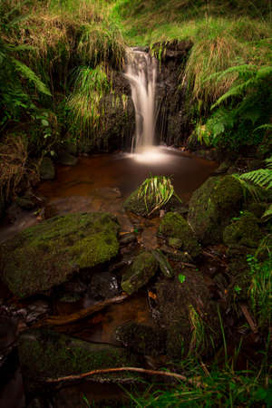 Small waterfall on pendle hill, Lancashire. Smooth flowing water amongst fern leaves Standard-Bild
