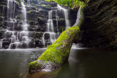 Hidden waterfall in a deep gorge with trickling white water. Forest of Bowland, Ribble Valley, Lancashire