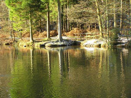 dean lake: Winters Reflection
