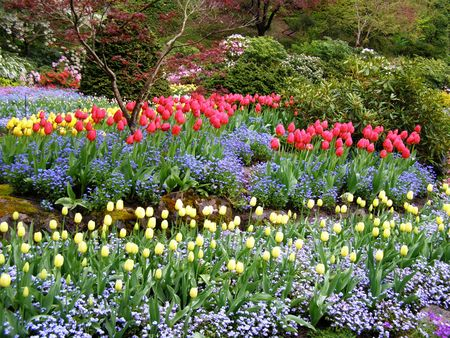 Spring in Butchart Gardens, Victoria, Canada Stock Photo - 2668851