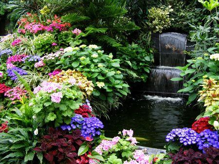 Primavera in Butchart Gardens, Victoria, in Canada