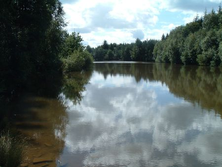 dean lake: Forest Lake