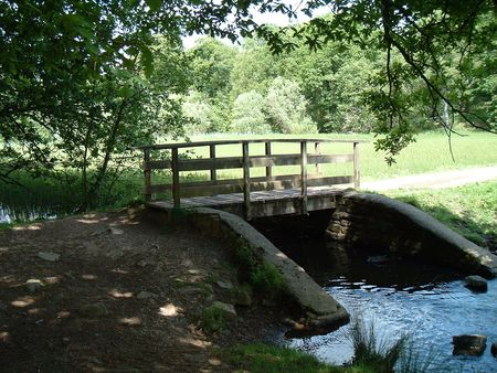 dean lake: Bridge at Cannop Ponds, Forest of Dean