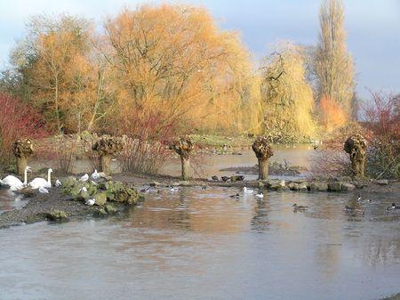 winters: Winters Ponds Stock Photo