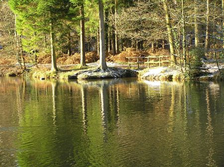 dean lake: Mallards Pike in the Forest of Dean
