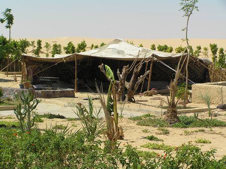 bedouin: Bedouin Tent