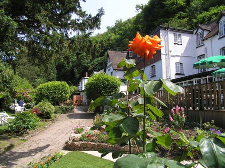Garden of Hotel at Symonds Yat, Forest of Dean