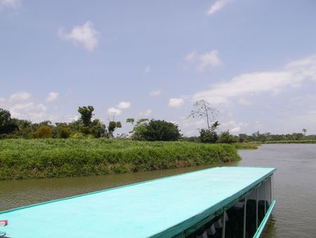canal parade: boat on Canal near Tortuguero, Costa Rica