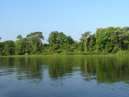 Canal vicino a Tortuguero, Costa Rica
