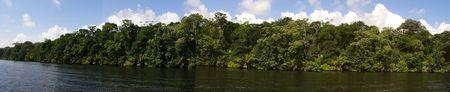 Canal vicino a Tortuguero, Costa Rica panoramica Archivio Fotografico