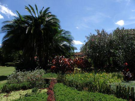 aberdares: Garden Scene in Aberdares National Park Stock Photo