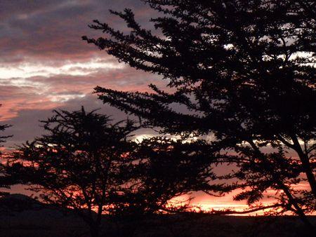 lake nukuru: Kenya Safari, Sunrise over Masai Mara Stock Photo