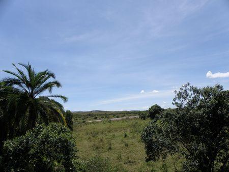 aberdares: Kenya Safari, Masai Mara Stock Photo