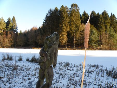 dean lake: Frog on Mermaid Sculpture in front of Snow and Ice on Mallards Pike Lake, Forest of Dean