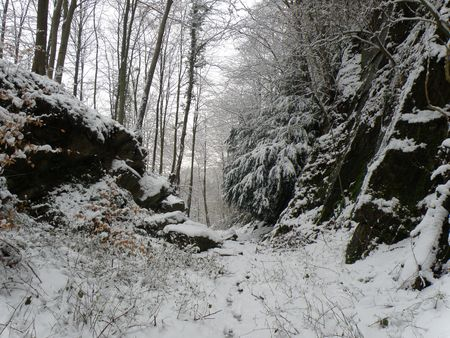 dean: Old Quarry in Forest of Dean Stock Photo