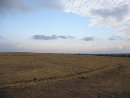 predetor: Paesaggio nella riserva di caccia nei pressi del monte Kenya pejata OL