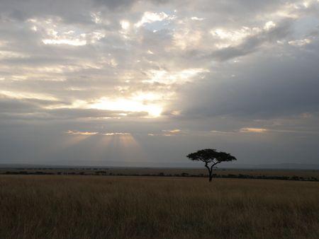 aberdares: Sunrays through clouds in the masai mara Stock Photo