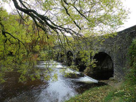 exmoor: Bridge in Exmoor