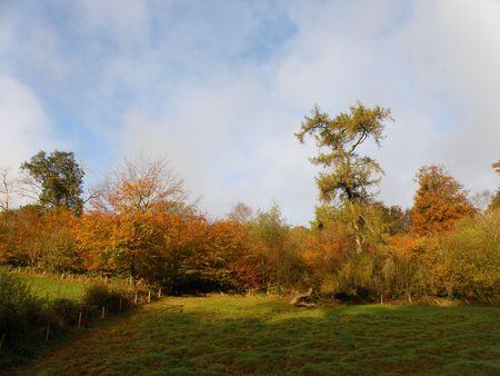exmoor: Exmoor View