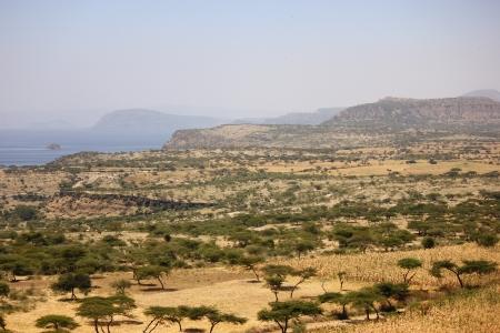 ethiopian: Ethiopian Landscape