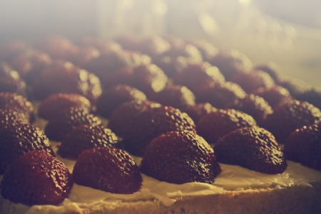Delicious strawberry pie or cake with regular aranged fruits in retro style photo