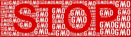 Tag or word cloud genetically modified organisms or GMO in shape photo