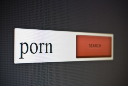 Internet search bar with phrase porn photo