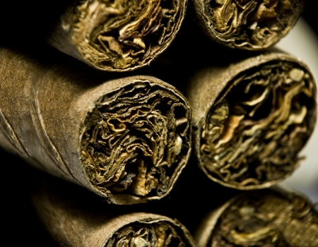 Macro of brown dry cigarettes or cigarillo as addiction concept photo