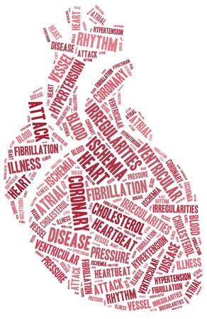 hipertension: Enfermedades del coraz�n Nube de palabras relacionadas en forma de coraz�n de �rganos