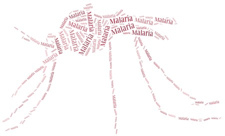 Word cloud malaria disease related photo
