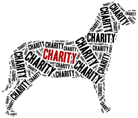 money cat: Animals or domestic pets charity. Word cloud illustration.