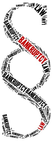 ordenanza: Bankruptcy law. Concept related to different areas of law.
