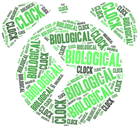 biological: Biological clock or woman health concept.