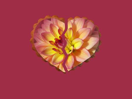 Broken floral heart
