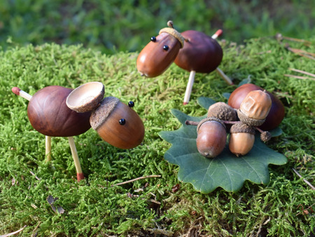 Animal figurines made of chestnuts and acorns Stock Photo
