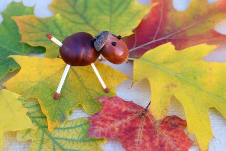 Animal figurine made of chestnuts and acorns on colorful autumn leaves