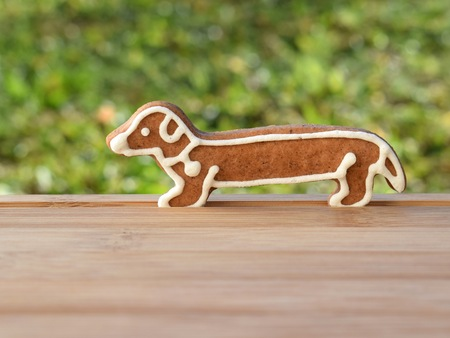 Gingerbread in a shape of dog Imagens